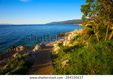 Amazing rocky beach with crystalic clean sea water with pine trees in the coast of Adriatic Sea, Istria, Croatia