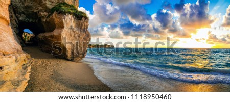 Amazing Sea