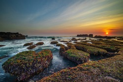 Amazing seascape. Ocean with moving wave. Low tide. Stones covered by green moss and seaweeds. Sun on horizon. Sunset scenery background. Long exposure. Soft focus. Mengening beach, Bali, Indonesia