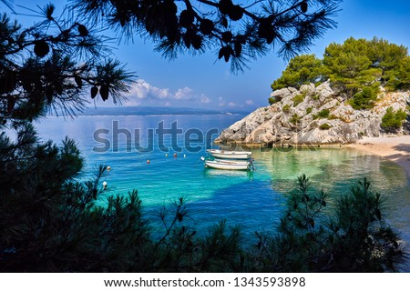 Amazing seascape of Adriatic sea. Brela beach, Croatia, Europe. Colorful summer view of small beach. Croatian coast with clear water and pine trees around. Tropical viewpoint for design postcard. Сток-фото ©