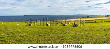 Amazing seascape with hay bales in the far north of Scotland near Wick, Caithness, Scotland, Britain