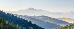 Amazing soft sunrise panorama in mountains. Cerpathian mountain peaks and hills in autumn over the tops of pine trees