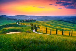 Amazing summer colorful sunset landscape in Tuscany. Spectacular flowery grain fields and winding road with cypresses at sunset near Siena, Tuscany, Italy, Europe