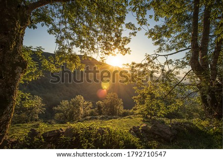 Amazing sunset in the Redes national park, Spain Foto stock ©