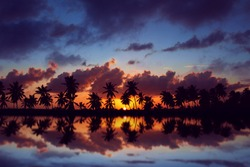 Amazing sunset sky with reflection on the water, beach with palm trees silhouette