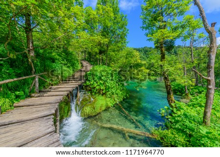 Amazing touristic wooden pathway in the colorful deep forest with clean lakes and spectacular waterfalls, Plitvice National Park, Croatia #1171964770