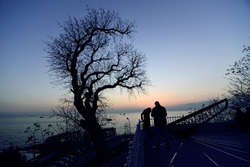 Amazing tree silhuette with couple talking. Sunset colors , sun clock behind.