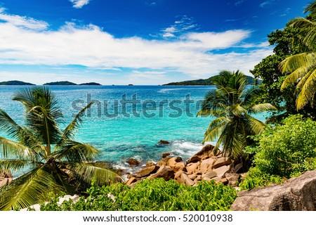 Amazing tropical beach #520010938