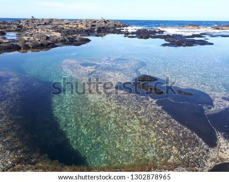 amazing view of coast in lanzarote island #1302878965