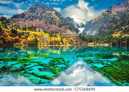Stock Photo Amazing view of crystal clear water of the Five Flower Lake (Multicolored Lake) among autumn woods in  Jiuzhaigou nature (Jiuzhai Valley National Park), China.