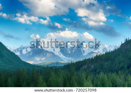 amazing view  of fir forest stretching to foot of great snow-covered mountains at sunny day #720257098