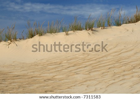 Amazing view of sand dune habitat against deep blue sky, clear, versatile stock image