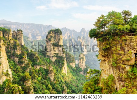 Amazing view of the Cock Pecking rock and scenic canyon in the Tianzi Mountains (Avatar Mountains), the Zhangjiajie National Forest Park, Hunan Province, China. Beautiful mountain landscape.