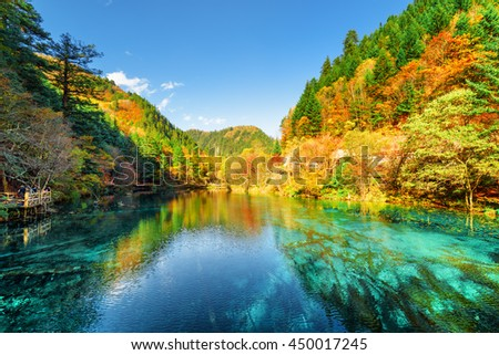 Stock Photo Amazing view of the Five Flower Lake (Multicolored Lake) among wooded mountains in Jiuzhaigou nature reserve (Jiuzhai Valley National Park), China. Colorful autumn forest reflected in azure water.