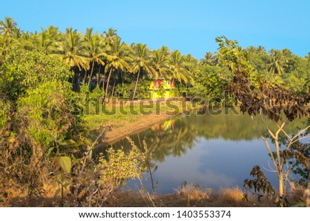 Amazing View. Tropical Forest. Rain Forest. Reflections. Blue sky. Lake surface. Peacefull landscape. #1403553374