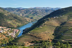Amazing views of Douro vineyards and river from Casal de Loivos viewpoint in Portugal