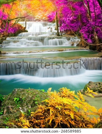 Amazing waterfall in colorful forest