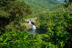 Amazing waterfall with two falls in the middle of  Iriomote island forest. Refreshing swimming hole, tropical vegetation around. Natural world heritage.