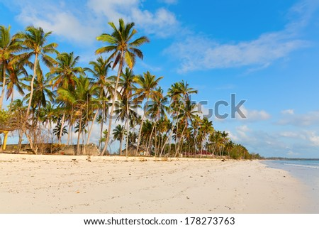 Amazing white sand beach at Uroa village, Zanzibar, Tanzania #178273763