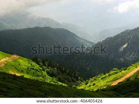 Shutterstock Amazing wild nature view of deep evergreen forest landscape on sunlight at middle of summer. Natural green scenery of cloud, road and mountain slopes that look as valley on background. Russia, Sochi