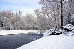 Amazing winter view of the pond. City park in winter scenery. Beautiful little pond in winter.