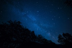 Amazingly peaceful photo of the milky way above silhouetted trees.