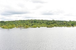 Amazon flooded forest as seen from the boat along Cuieiras River in Puranga Conquista Sustainable Development Reserve in Manaus, Brasil