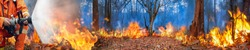 Amazon rain forest fire disaster is burning at a rate scientists have never seen before.