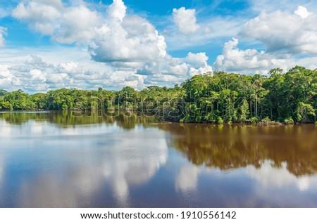Amazon rainforest lake reflection, the Amazon river basin comprise the countries of Bolivia, Brazil, Colombia, Ecuador, Peru, (French) Guyana, Suriname and Venezuela.