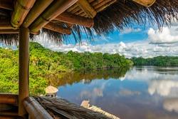 Amazon Rainforest landscape seen from a bird watching observation tower, Yasuni national park, Ecuador.