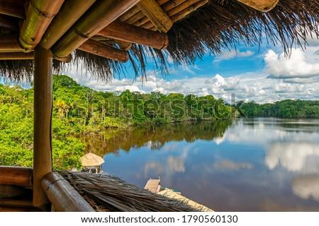 Amazon Rainforest landscape seen from a bird watching observation tower, Yasuni national park, Ecuador. Stock fotó ©