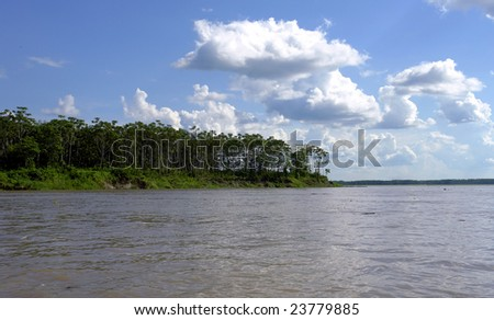 Amazon river margin riverbank and forest