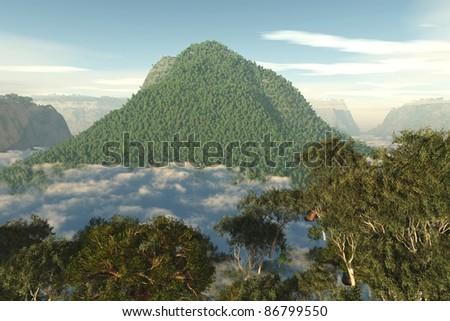 Amazonia Amazon 3D