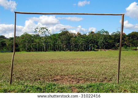 Amazonian goal posts, The Amazon, Peru