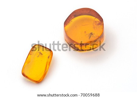 amber with fossil of a fly isolated against a white background