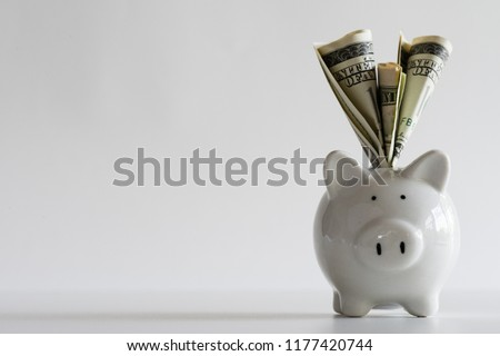 America dollars banknotes money into piggy bank on white background. Saving money wealth and financial concept.