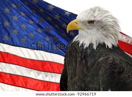 Democracy American Flag American Flag And Bald Eagle