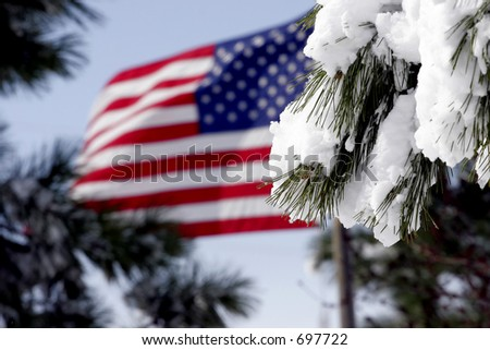 American Flag waving in a breeze after a snowstorm - snow covered pine branches in the foreground.