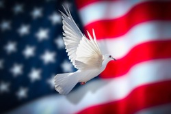 American flag with dove of peace 2020