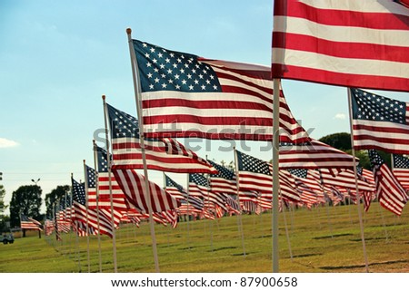 American Flags Flying in a Park