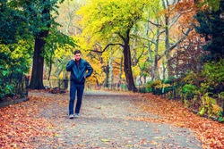 American man traveling at Central Park, New York in autumn day. Man wearing black leather jacket, jeans, gray casual shoes, walks on road with colorful foliage of trees, fallen leaves, talks on phone.