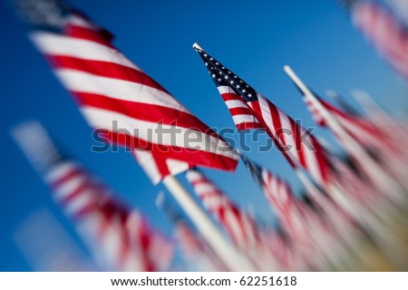 American USA flags arranged under clear blue sky. Shot angled and with a lensbaby for optical blur and limited depth of field.