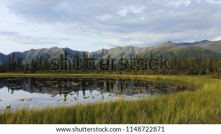American wilderness and landscapes #1148722871