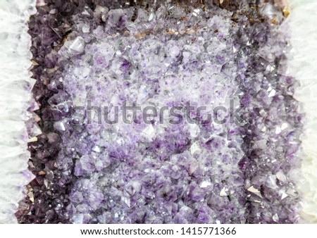 Amethyst druse, amethyst crystals close up view, precious stone. #1415771366