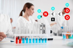Amino Acids chemical formula, illustration. Rack with test tubes on white table and scientists in laboratory