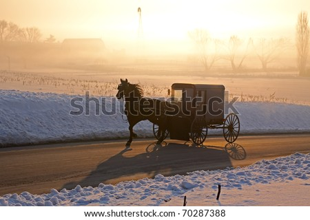 Amish carriage in morning fog,Lancaster County,Pennsylvania - stock photo