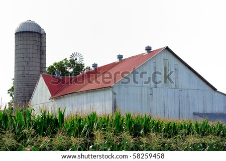 Amish Country Farm and fresh corn