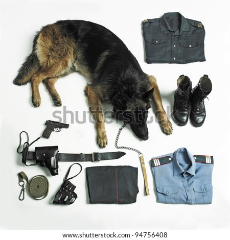 Ammunition and equipment of the Russian police and special forces