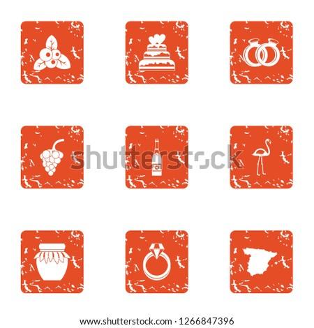 Amour icons set. Grunge set of 9 amour icons for web isolated on white background