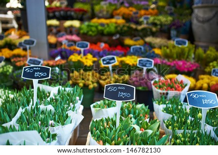 Amsterdam flower market close up details